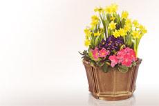 Moderne schalen f r weihwasser aus bronze online kaufen und bestellen preise katalog - Moderne pflanzschalen ...
