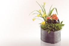 Moderne gef e f r weihwasser aus bronze online kaufen und bestellen preise katalog bilder - Moderne pflanzschalen ...